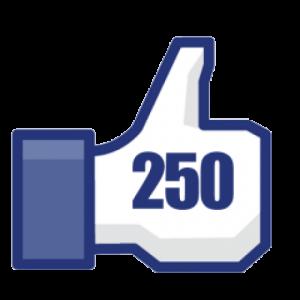 Bijna 250 Facebook-vind-ik-leu...